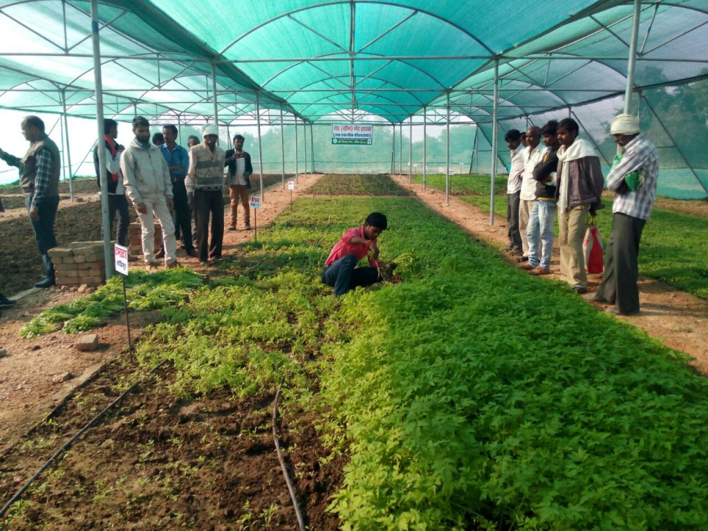 Enabling farmers to adapt agri-technologies to local contexts