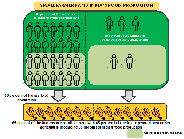 Small farmers and India's food production